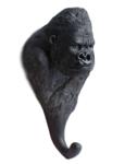 wandhaak aap orang oetang