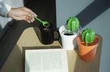Qualy cactus voorraadpotje met lepeltje_