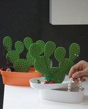 Qualy cactus sierradenhouder_