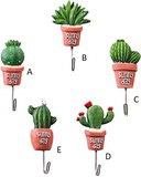 wandhaakje cactus