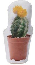 Woondecoratie / deurstopper cactus 4