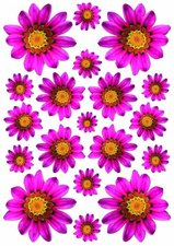 Fietsstickers bloemen Margriet fuchsia