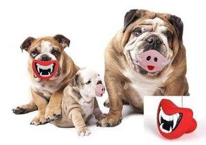 Honden speeltje varkenssnoet