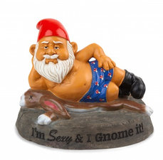 Sexy tuinkabouter 'Im sexy and I gnome it'