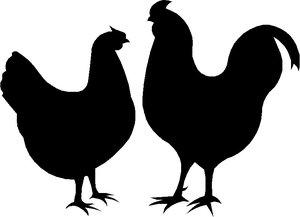 Raamsticker kip en haan div. kleuren