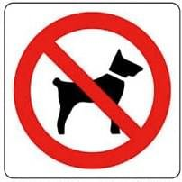 Pictogram sticker Verboden voor honden 10x10cm