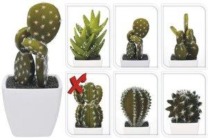 Cactus kunstplantje 4