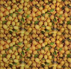 Ovaal tafelzeil citroentjes fris