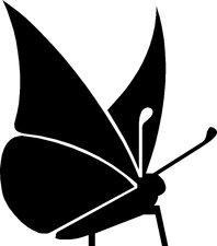 Raamsticker vlinder div. kleuren