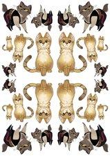 Fietsstickers kat in pak