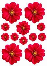Fietsstickers bloemen rood