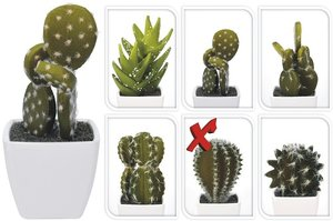 Cactus kunstplantje 5