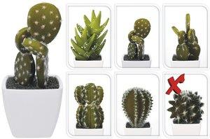 Cactus kunstplantje 6