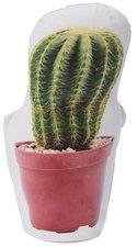 Woondecoratie / deurstopper cactus 2