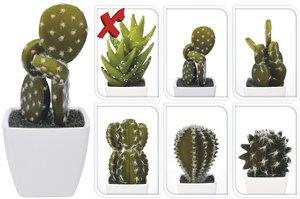 Cactus kunstplantje 1