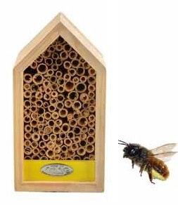 Bijenhuis geel