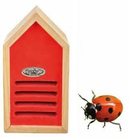 Lieveheersbeesthuis rood
