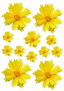 Fietsstickers bloemen geel