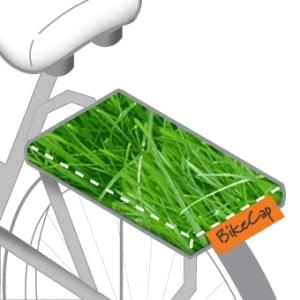 fietskussen gras