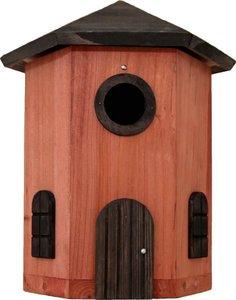 Nestkastje tornholk Wildlife terra (21)